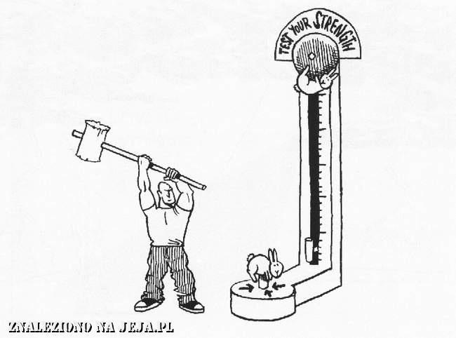 Samobójstwa zajączka: Zajączek i siłacz