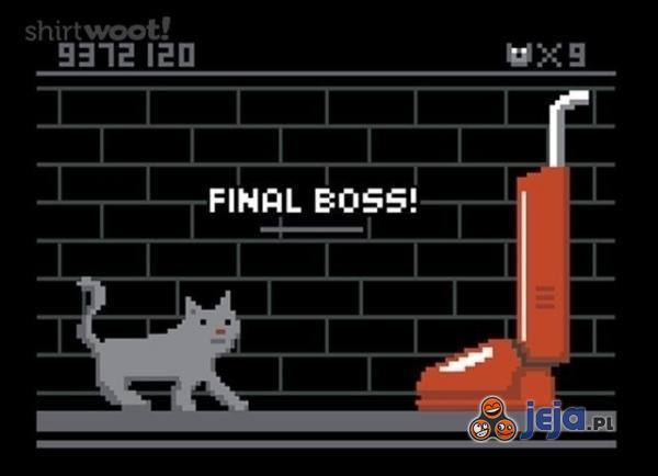 Gdyby koty robiły gry...