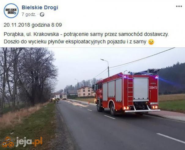 Raport ze śląskich dróg