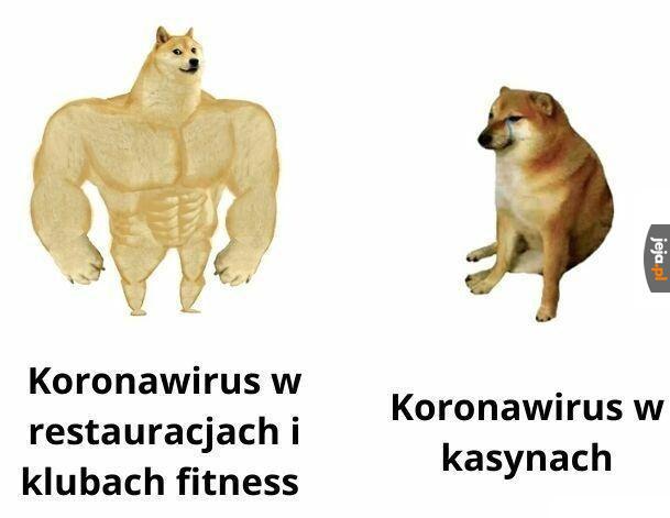Koronawirus w różnych miejscach