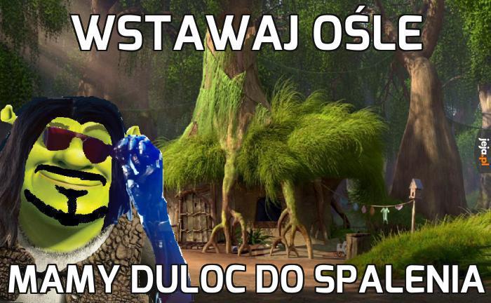 Shrek 2077