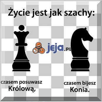 Życie jest jak szachy