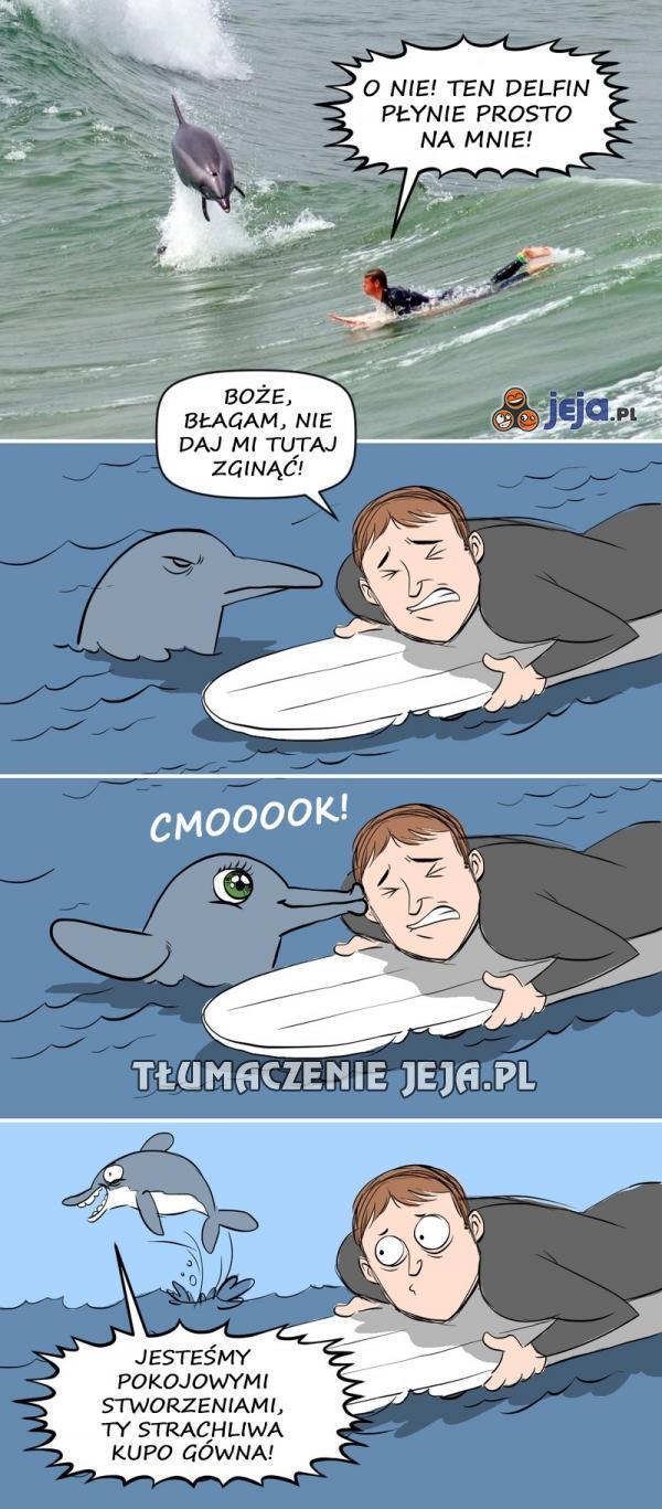 Atak diabelskiego delfina