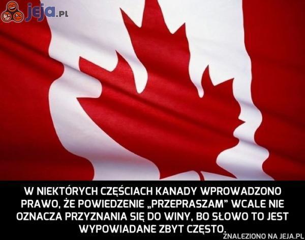 """W Kanadzie """"przepraszam"""" już nie wystarczy"""