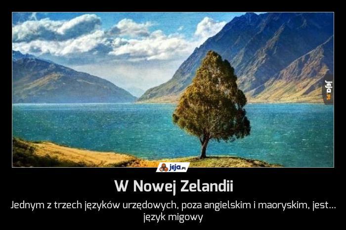 W Nowej Zelandii