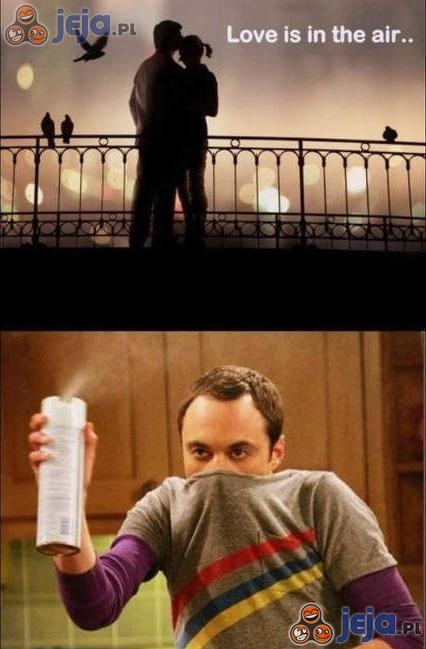 Miłość wisi w powietrzu...