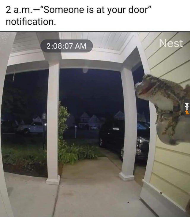 Niespodziewane odwiedziny