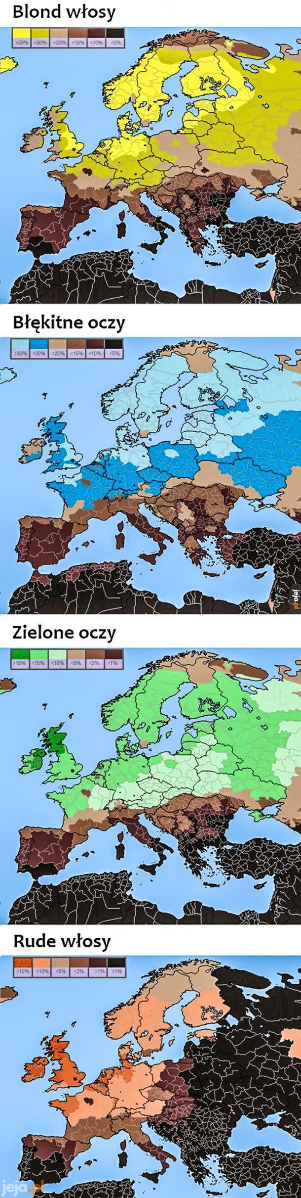 Mapa genów