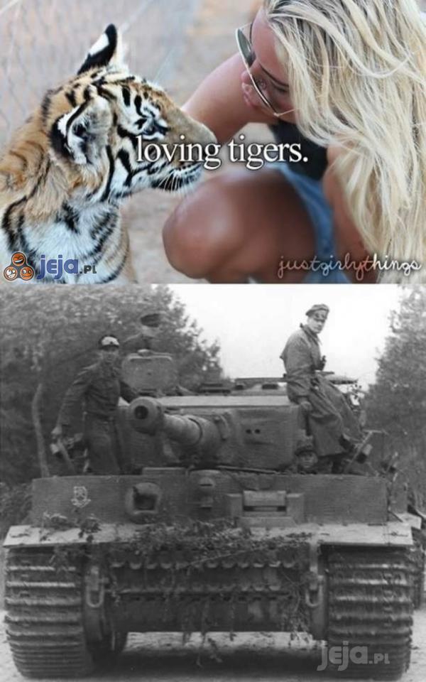 Miłość do tygrysków...