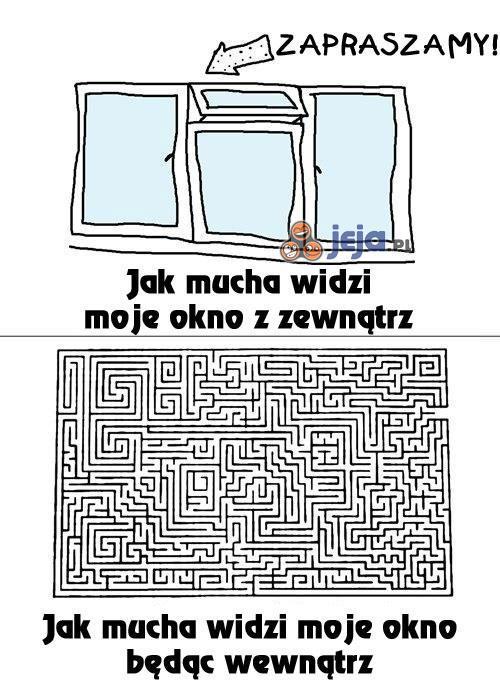Mucha vs okna