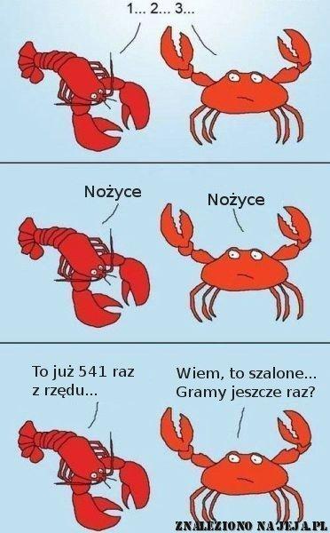 Rak i krab