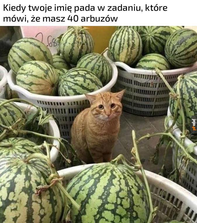Po co ci tyle arbuzów, Mati?