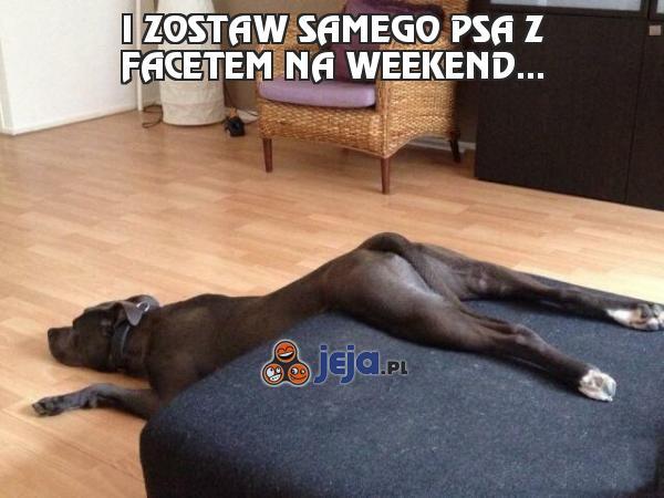 I zostaw samego psa z facetem na weekend...