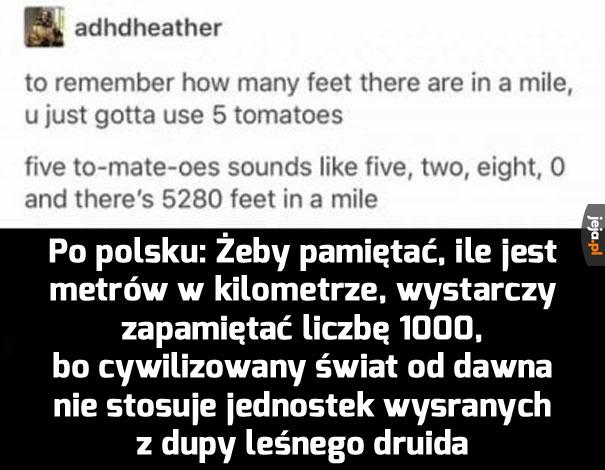 Fachowe tłumaczenie