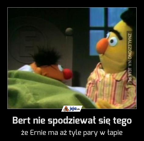 Bert nie spodziewał się tego
