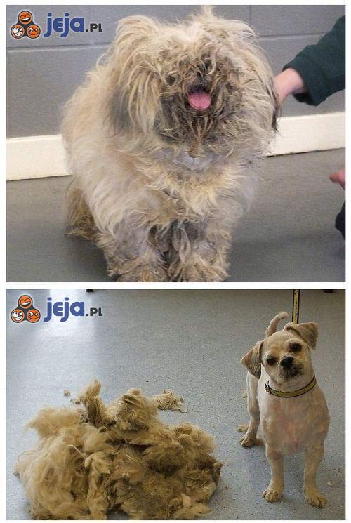 Przed i po wizycie u fryzjera