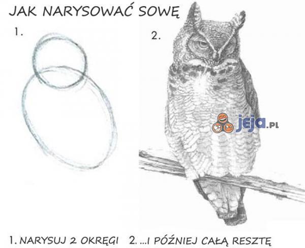 Jak narysować sowę