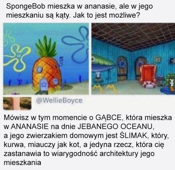 Kto normalny doszukuje się logiki w SpongBobie?