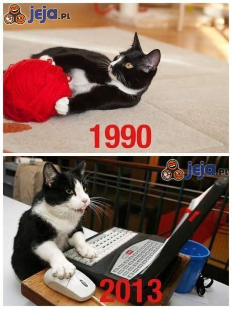 Koty kiedyś inaczej spędały wolny czas