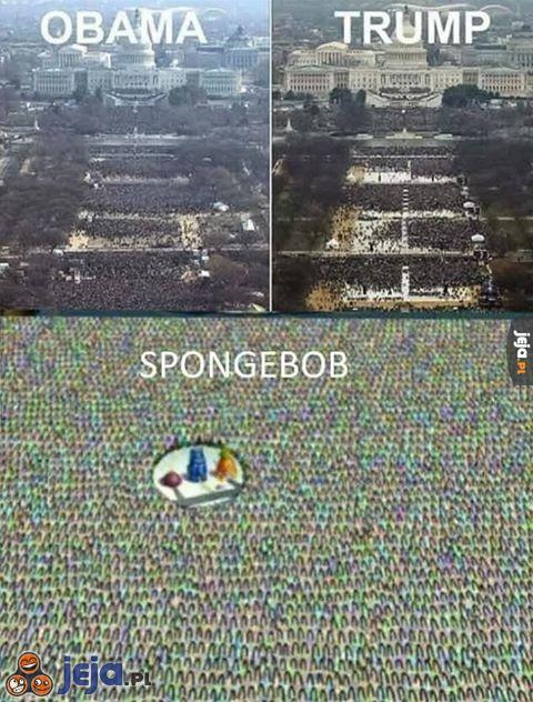I kto ma największą popularność?