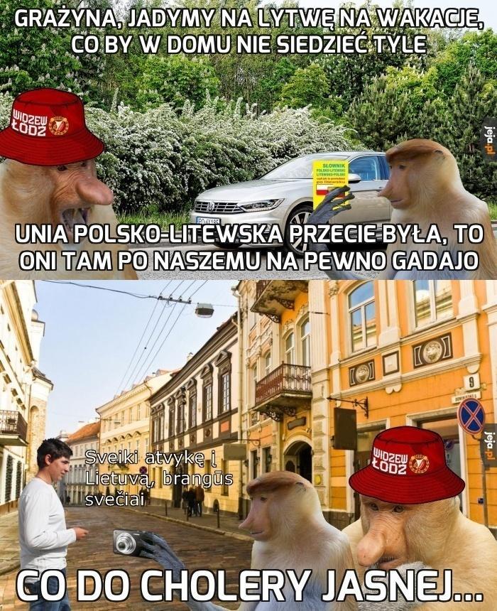 Janusze w Wilnie