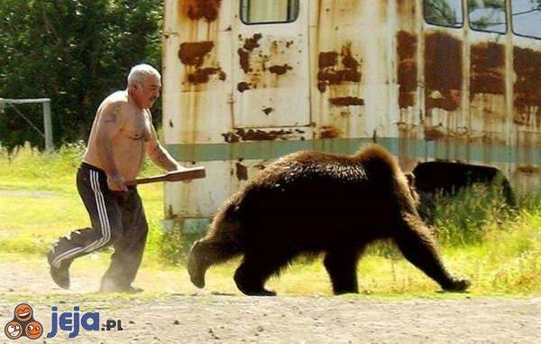 Człowiek, bejsbol i niedźwiedź