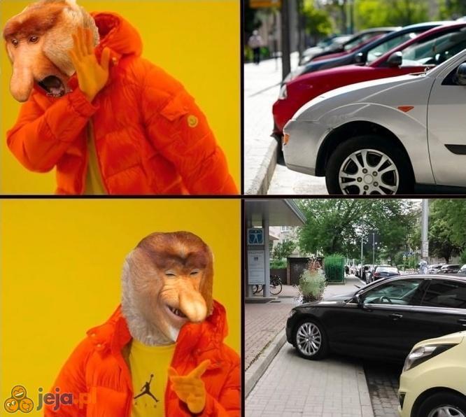 Januszowi należy się więcej przestrzeni do parkowania