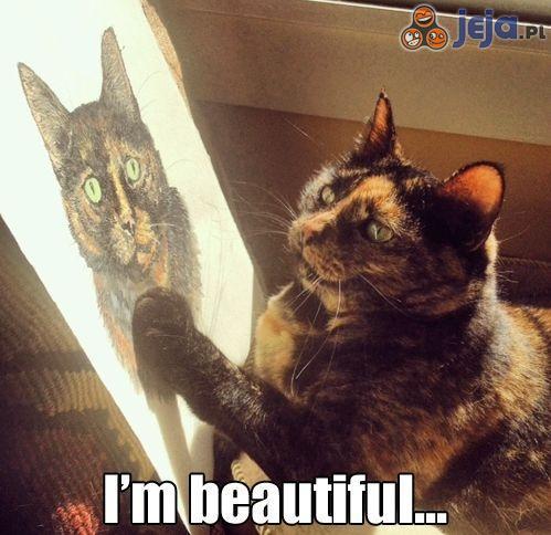 Jestem taki piękny...