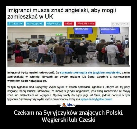 Czekam na Syryjczyków znających Polski, Węgierski lub Czeski
