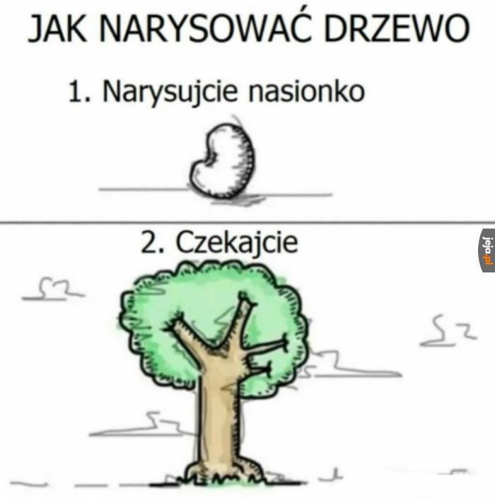 Jak narysować idealne drzewo