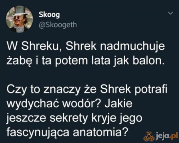 Niezbadane są sekrety Shreka