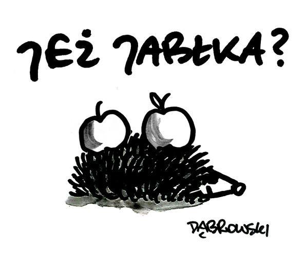 Jeż Jabłka?