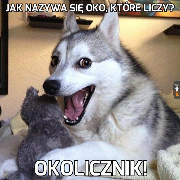 Tymczasem na polskim