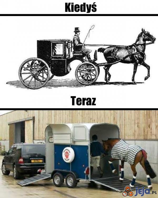 Kto jak kto, ale konie nie narzekają na zmiany
