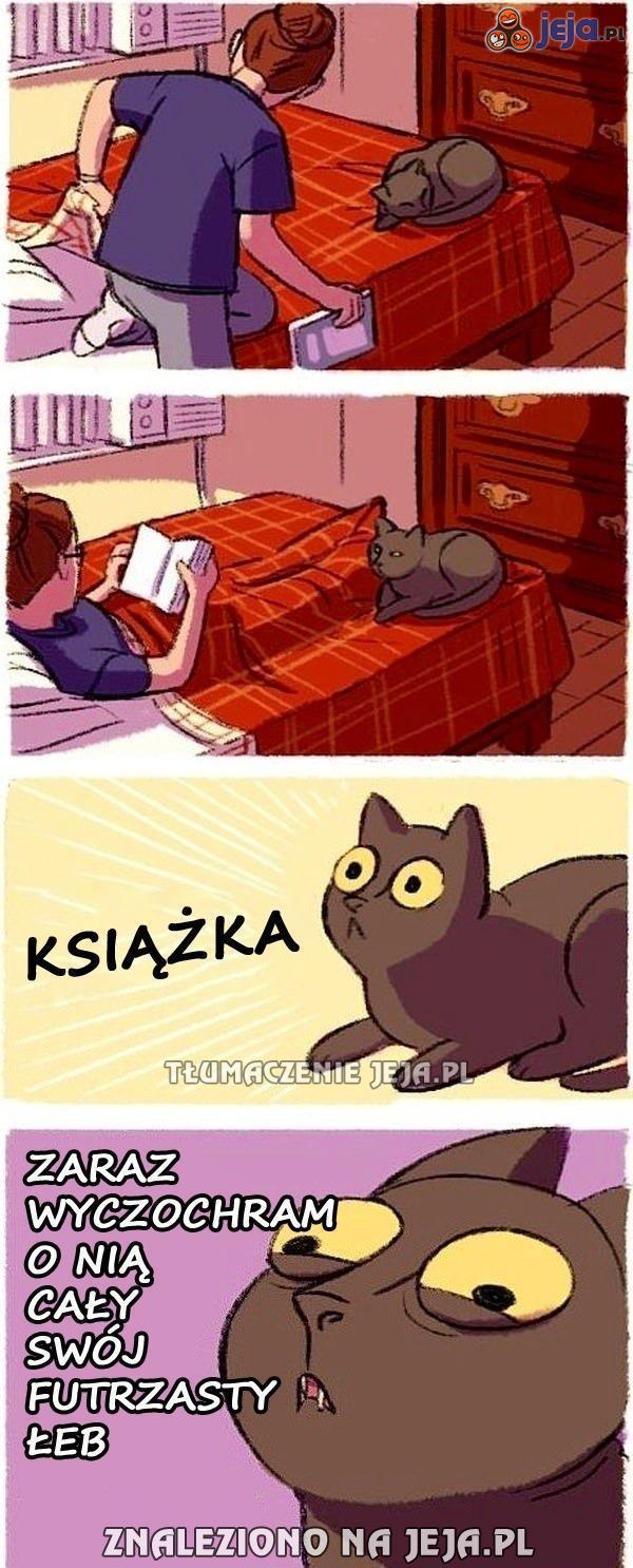 To je kot, tego nie zrozumiesz
