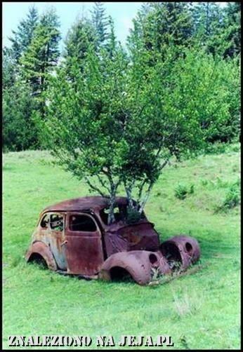 Zaginiony samochód