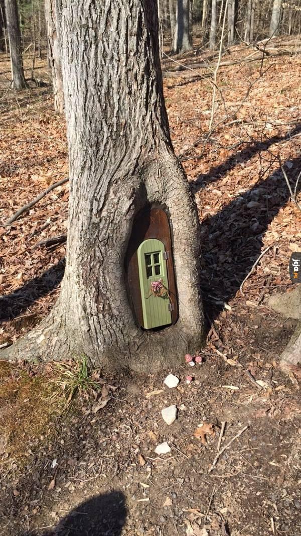 Chyba tu mieszka jakaś wiewiórka