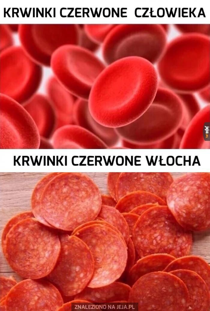 Rożnica czerwonych krwinek