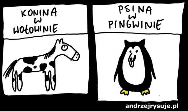 Konina w wołowinie...