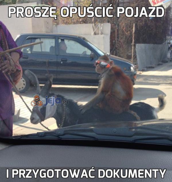 Proszę opuścić pojazd