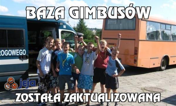 Baza gimbusów