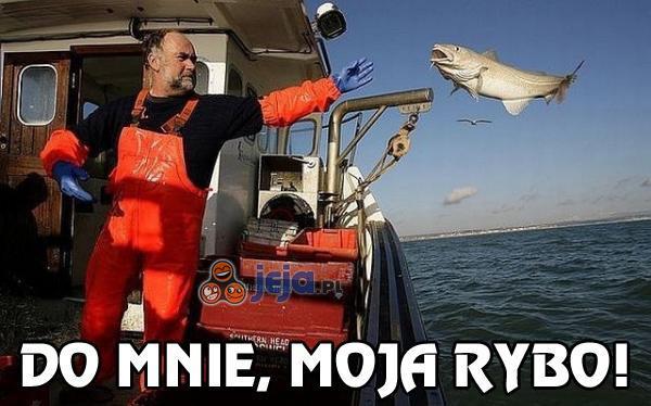 Do mnie, moja rybo!