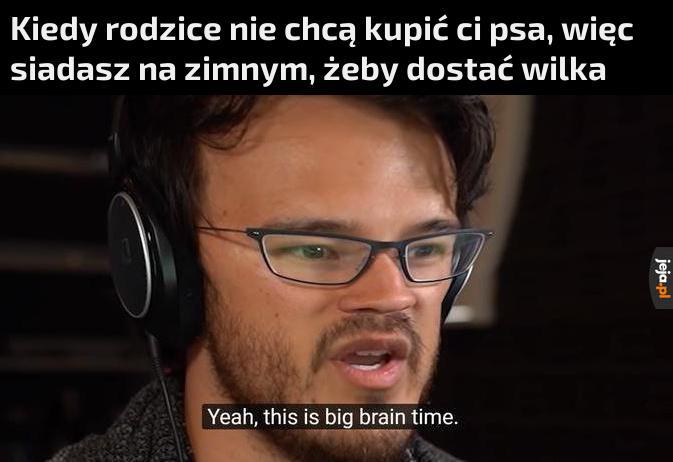 Wielkiego mózgu czas