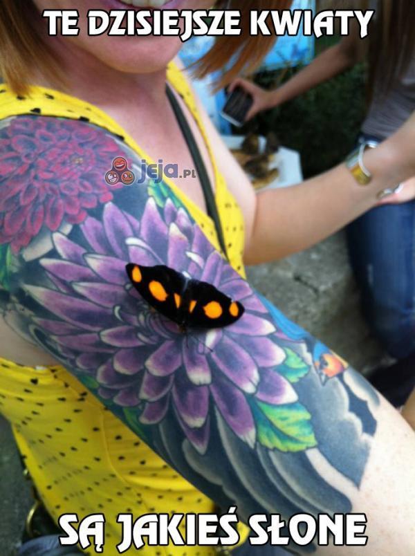 Tatuaż przechytrzył motyla