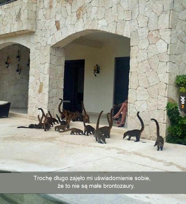 Brontozaury