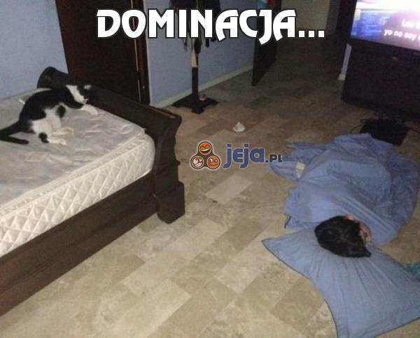 Dominacja...