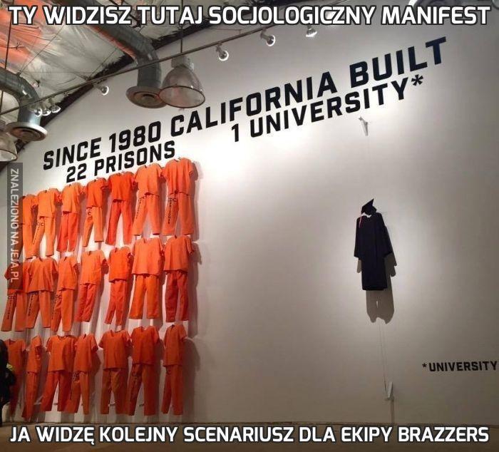 Ty widzisz tutaj socjologiczny manifest