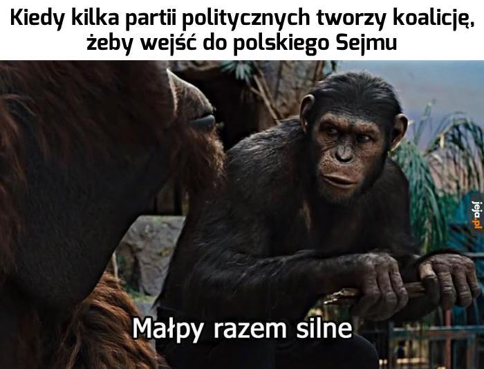 Nowa siła w polityce