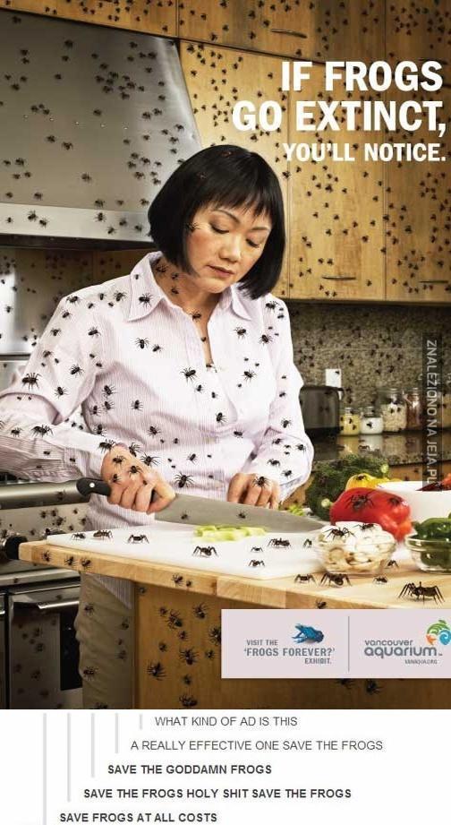 Ratujmy żaby! Za wszelką cenę!