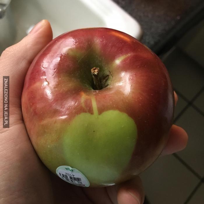 Jabłko na jabłku